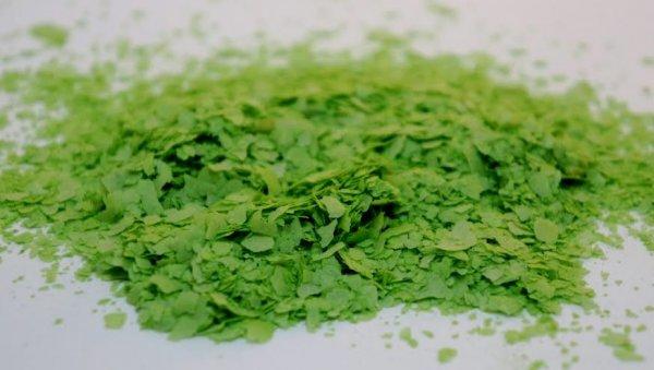 PurColour Purfetti Green | All natural biodegradable confetti safe.  Safe for wildlife.
